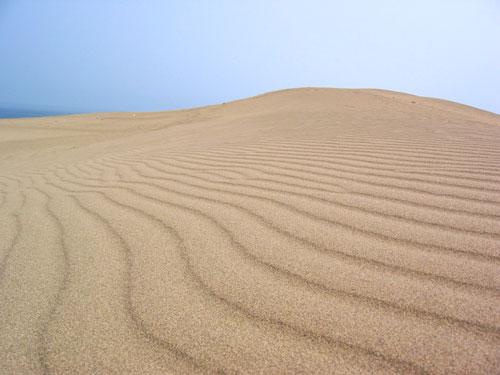 鳥取砂丘・・・日本の砂漠ですね。